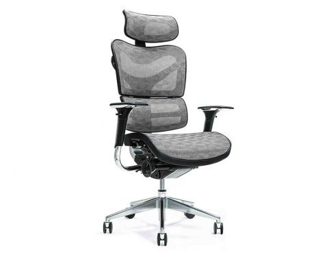 Ergonomiczny fotel biurowy ERGO 700 szary